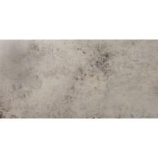 Фоновая плитка Ceracasa Evolution Gris 49.1x98.2 см